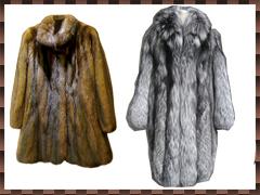 毛皮・衣類